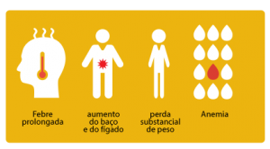 Sintomas VL