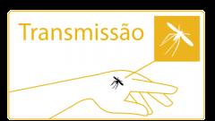 Transmissao Leishmaniasis: bite of a fly